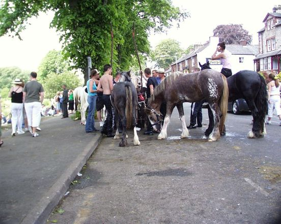 Appleby horsefair 110606 horse group