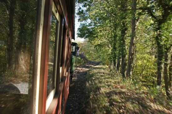 20/10/18  WELSHPOOL& Llanfair Light Rly. Through The Trees.
