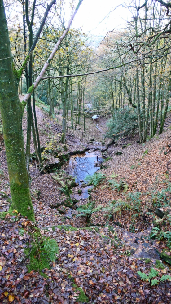 11/11/18 RIVINGTON TERRACED GARDENS.  The Dell & Blue Pool Bridg