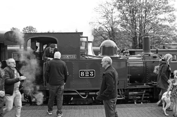 20/10/18  LLANFAIR CAEREINION. Welshpool & Llanfair Light Railwa