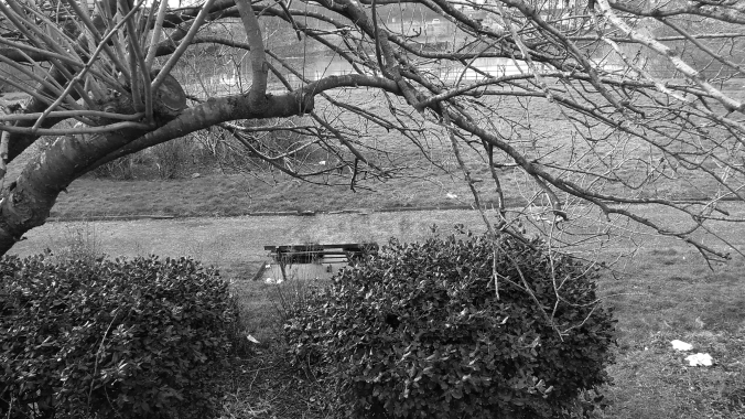 WARRINGTON. Marshall Gardens. A Bench.