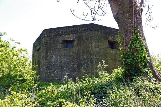 04-05-19 PARKGATE. WW2 Pillbox Bat Roost.