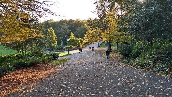 27/10/19.  PRESTON. Avenham Park.