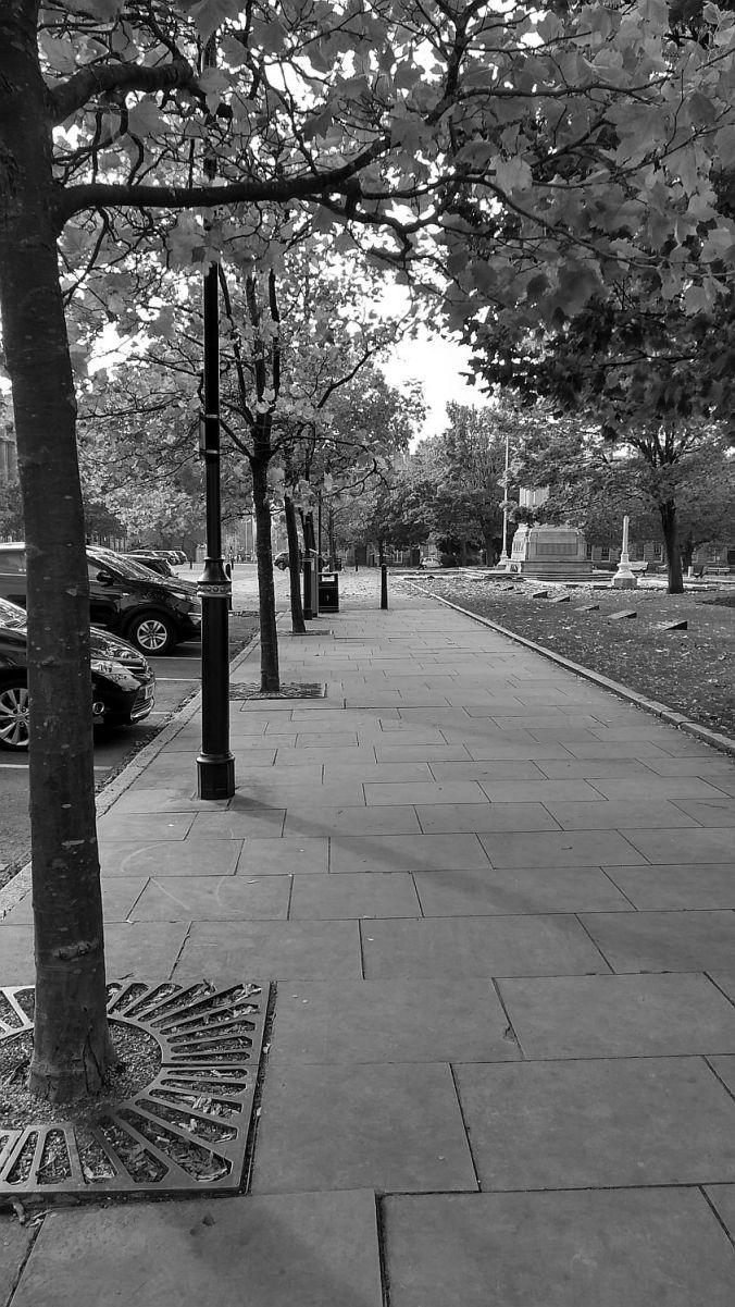 07. 31-10-19 BIRKENHEAD. Hamilton Square Trees