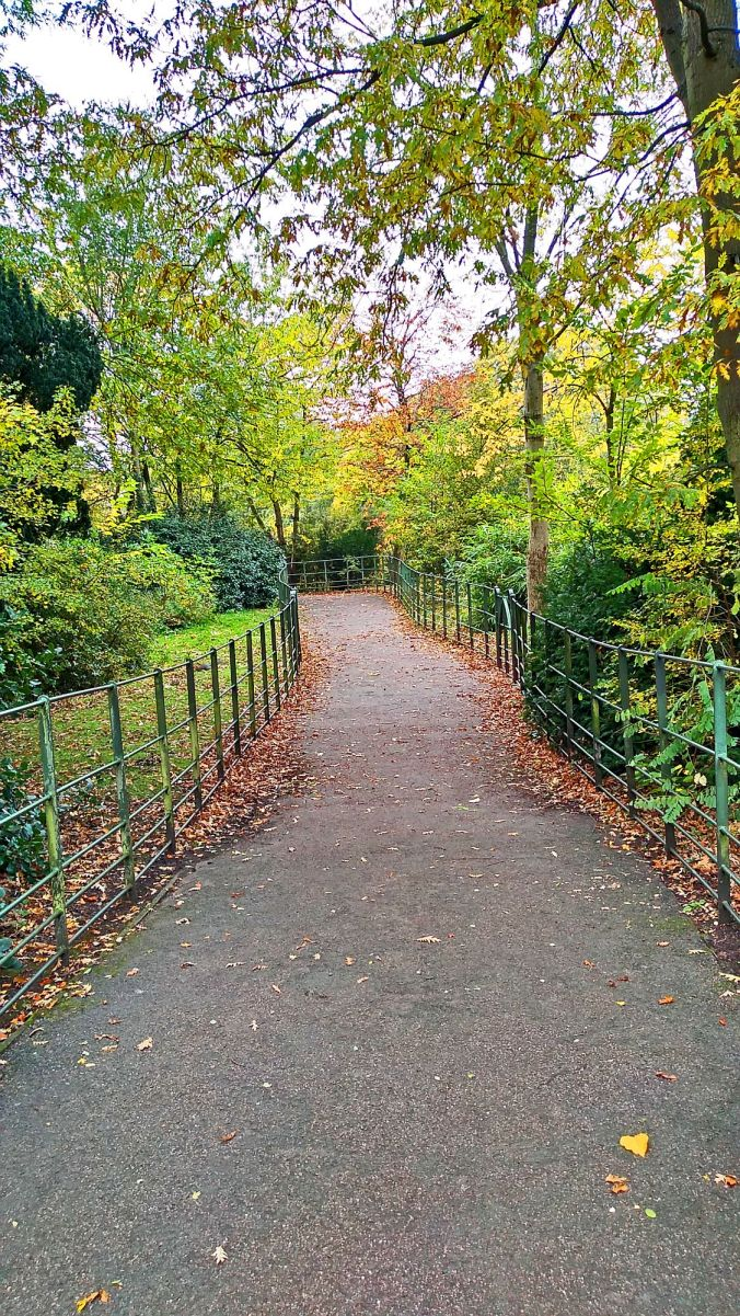 31/10/19  BIRKENHEAD. Birkenhead Park. Path Through The Trees.