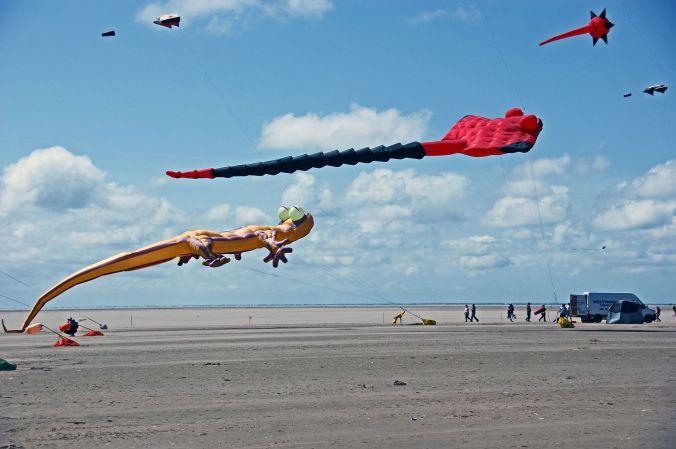 25/07/15 ST. ANNES. Gekko & Manta Ray Kites.